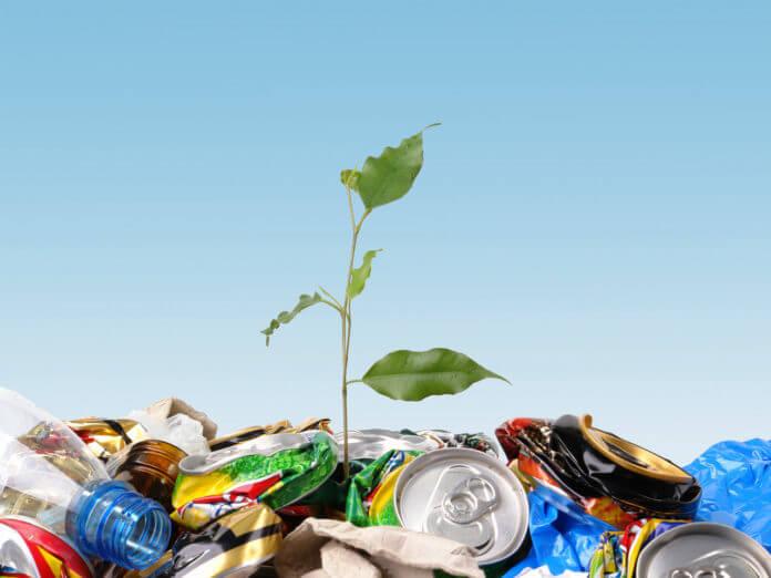 Чисто там, где мусор перерабатывают